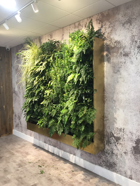 Living walls in a high rise hotel