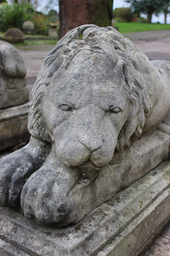 Stone Lions in the garden