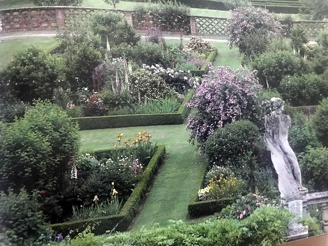Lady Salisbury English Gardener
